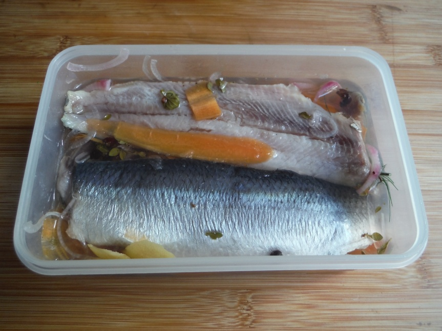 Herring in tupperware box